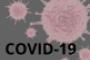 Divulgação de informação sobre COVID-19